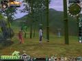 thumbs jade dynasty bamboo
