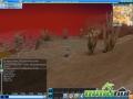 thumbs rose online desert