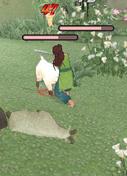 MMO Graveyard -- Dead Game List