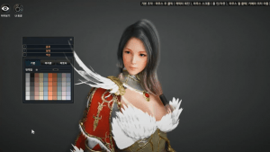 Black Desert: Valkyrie Character Overview Video Thumbnail