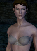 Shroud of Avatar Update 30 Thumb