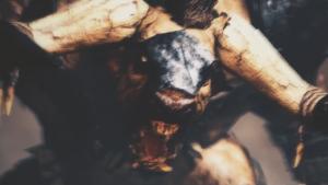 Total War: WARHAMMER Minotaurs Spotlight
