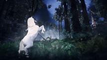 Black Desert Online - Arduanatt Trailer - thumb