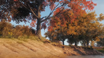 World of Tanks PC Sandbox Graphics Thumbnail